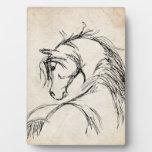 Artsy Horse Head Sketch Display Plaque