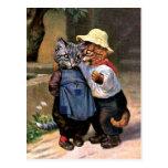 Arturo Thiele - gatos preciosos del país Tarjetas Postales