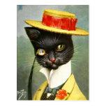 Arturo Thiele - Sr. Cat Postales