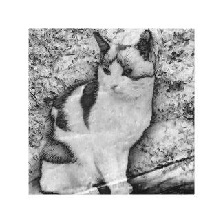 Arty Cat Canvas Print