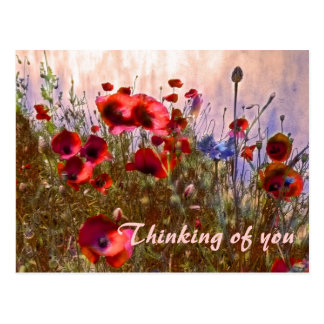 Arty poppies! post cards