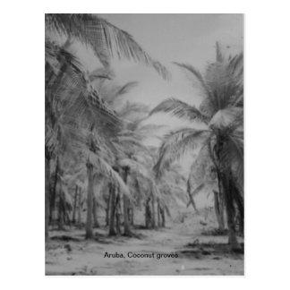 Aruba, arboledas del coco postal