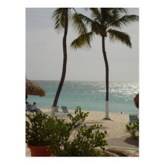 Aruba Baby Beach Postcard