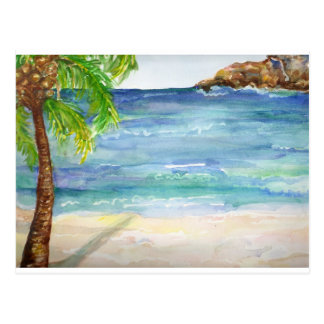Aruba  Beach with Palm Tree Postcard