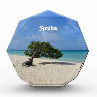 Aruba Divi Divi Tree Acrylic Award