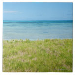 Aruba, grassy beach and sea ceramic tile