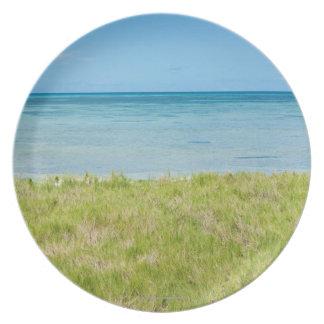 Aruba, grassy beach and sea dinner plate