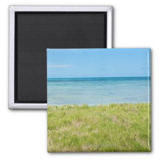 Aruba, grassy beach and sea refrigerator magnet