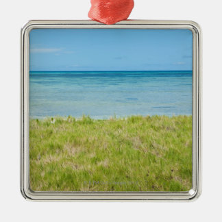 Aruba, grassy beach and sea metal ornament