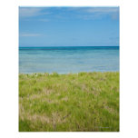 Aruba, grassy beach and sea posters