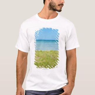 Aruba, grassy beach and sea T-Shirt