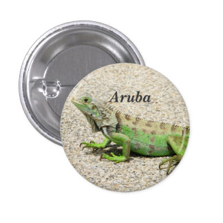 Aruba Green Iguana Button