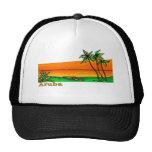 Aruba Mesh Hat