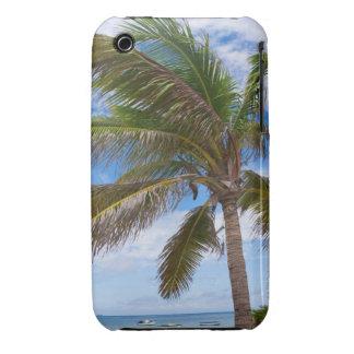 Aruba, palm tree on beach iPhone 3 case