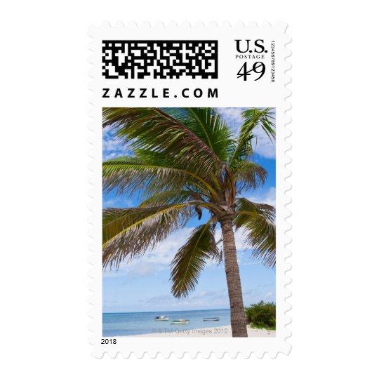 Aruba, palm tree on beach postage