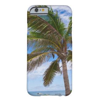Aruba, palmera en la playa funda de iPhone 6 barely there
