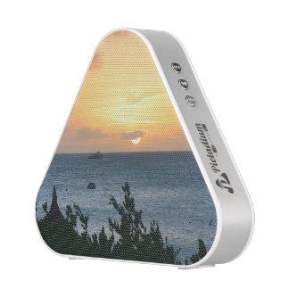 Aruba Setting Sun Speaker