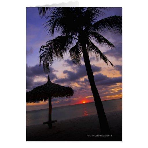 Aruba, silhouette of palm tree and palapa card