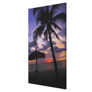 Aruba, silhouette of palm tree and palapa on canvas print