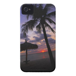 Aruba, silhouette of palm tree and palapa on iPhone 4 covers