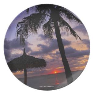 Aruba, silhouette of palm tree and palapa on dinner plate
