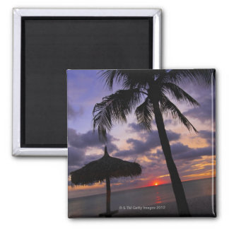 Aruba, silhouette of palm tree and palapa on magnet