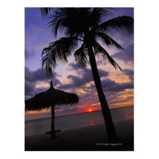 Aruba, silhouette of palm tree and palapa on postcard