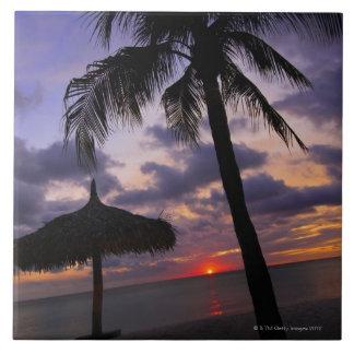Aruba, silhouette of palm tree and palapa on tile