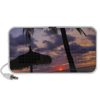 Aruba, silueta de la palmera y del palapa encendid sistema de altavoz