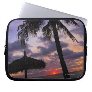 Aruba, silueta de la palmera y del palapa manga computadora