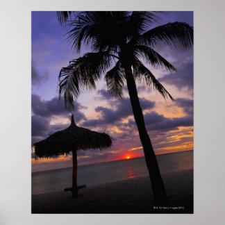 Aruba silueta de la palmera y del palapa poster