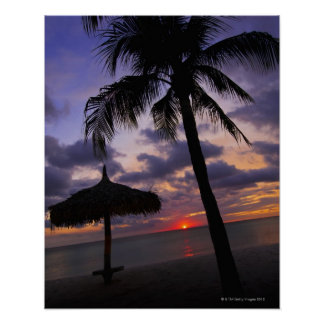 Aruba, silueta de la palmera y del palapa póster