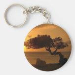 Aruba Sunset Divi Divi Tree Key Chain