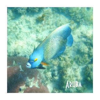 Aruba Underwater photo of Fish Canvas Print