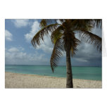 Aruban Beach I Beautiful Nature Scene Card