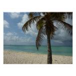Aruban Beach I Beautiful Nature Scene Perfect Poster