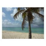 Aruban Beach I Beautiful Nature Scene Photo Print