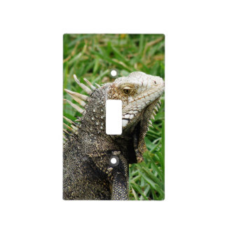 Aruban Lizard Switch Plate Covers