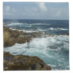 Aruba's Rocky Coast and Blue Ocean Napkin