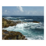 Aruba's Rocky Coast and Blue Ocean Photo Print