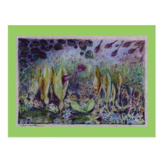 arum elve postcard