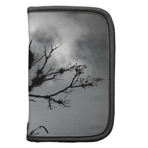 Árvore Contra o Céu Agendas