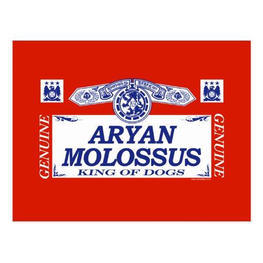 Aryan Molossus Postcard