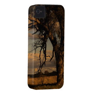 As a matter of fact iPhone 4 cover