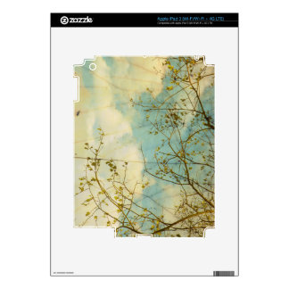 As Clouds Float By iPad Skin