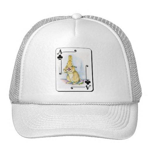 As de clubs gorras