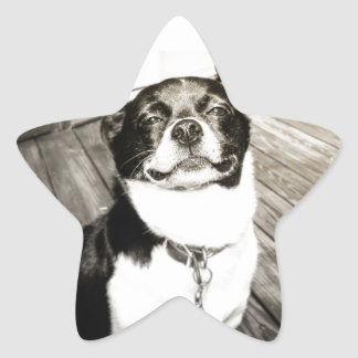 As Pegatina En Forma De Estrella