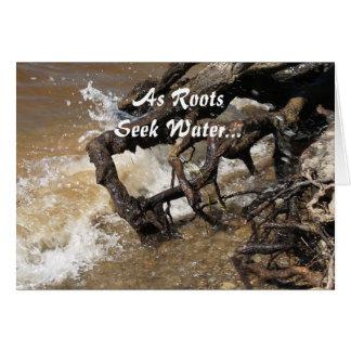 As Roots Seek Water... Greeting Card