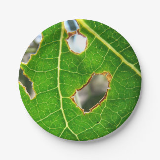 As Seen Through A Leaf Paper Plates