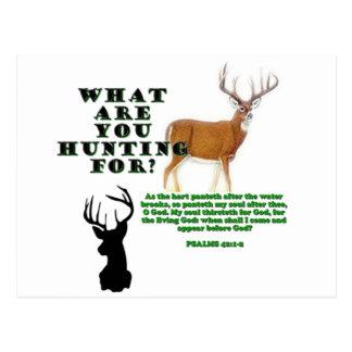 As the Deer Post Card